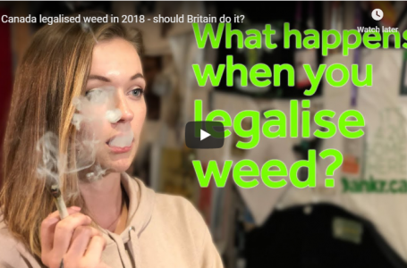Canada legalised weed in 2018 – should Britain do it?