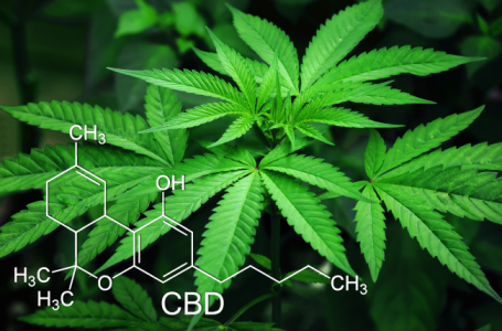Cannabidiol or CBD Oil: Help, Hope, and Hype for Psychiatric and Neurologic Conditions